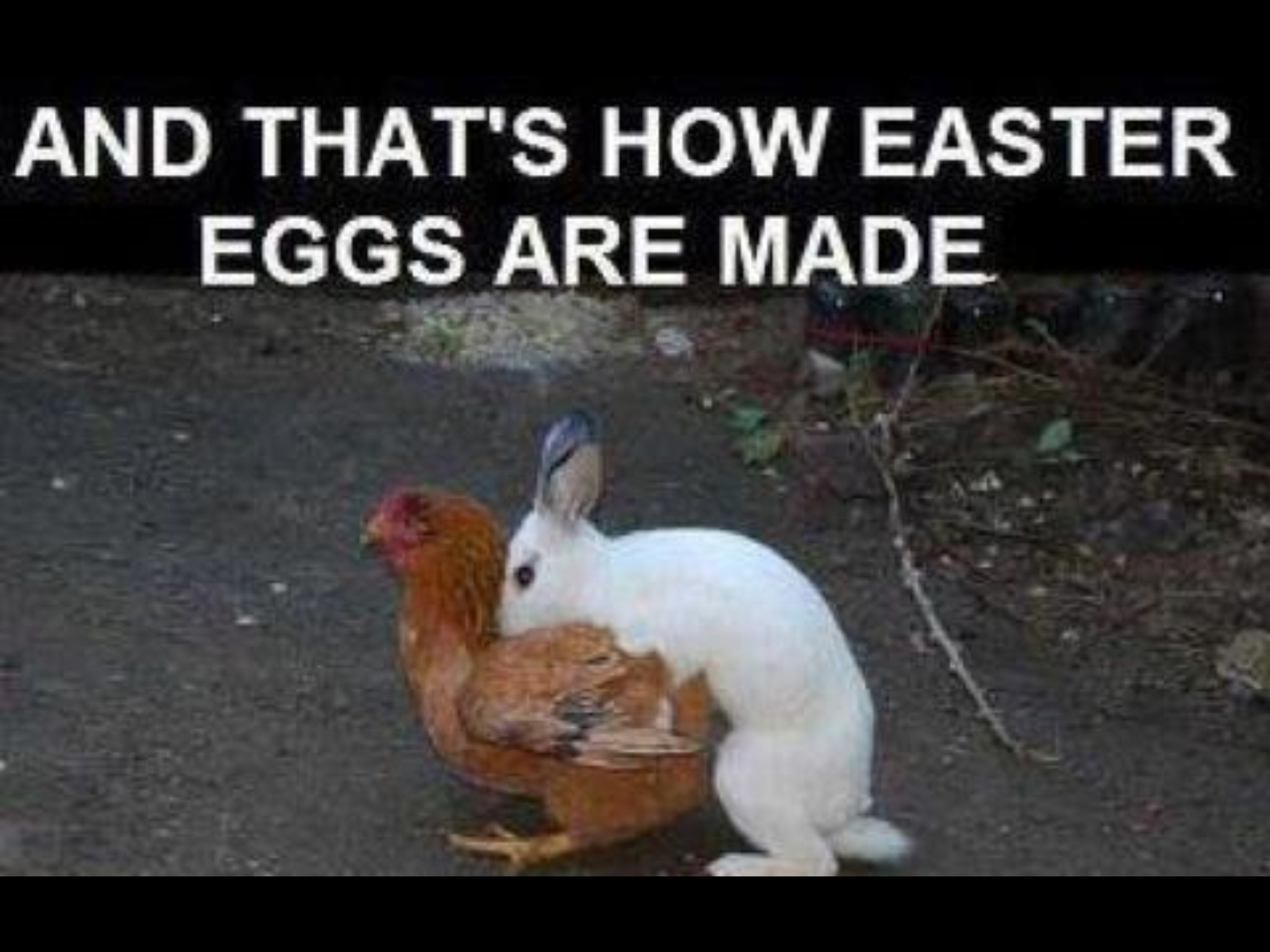 Easter As A Kid…