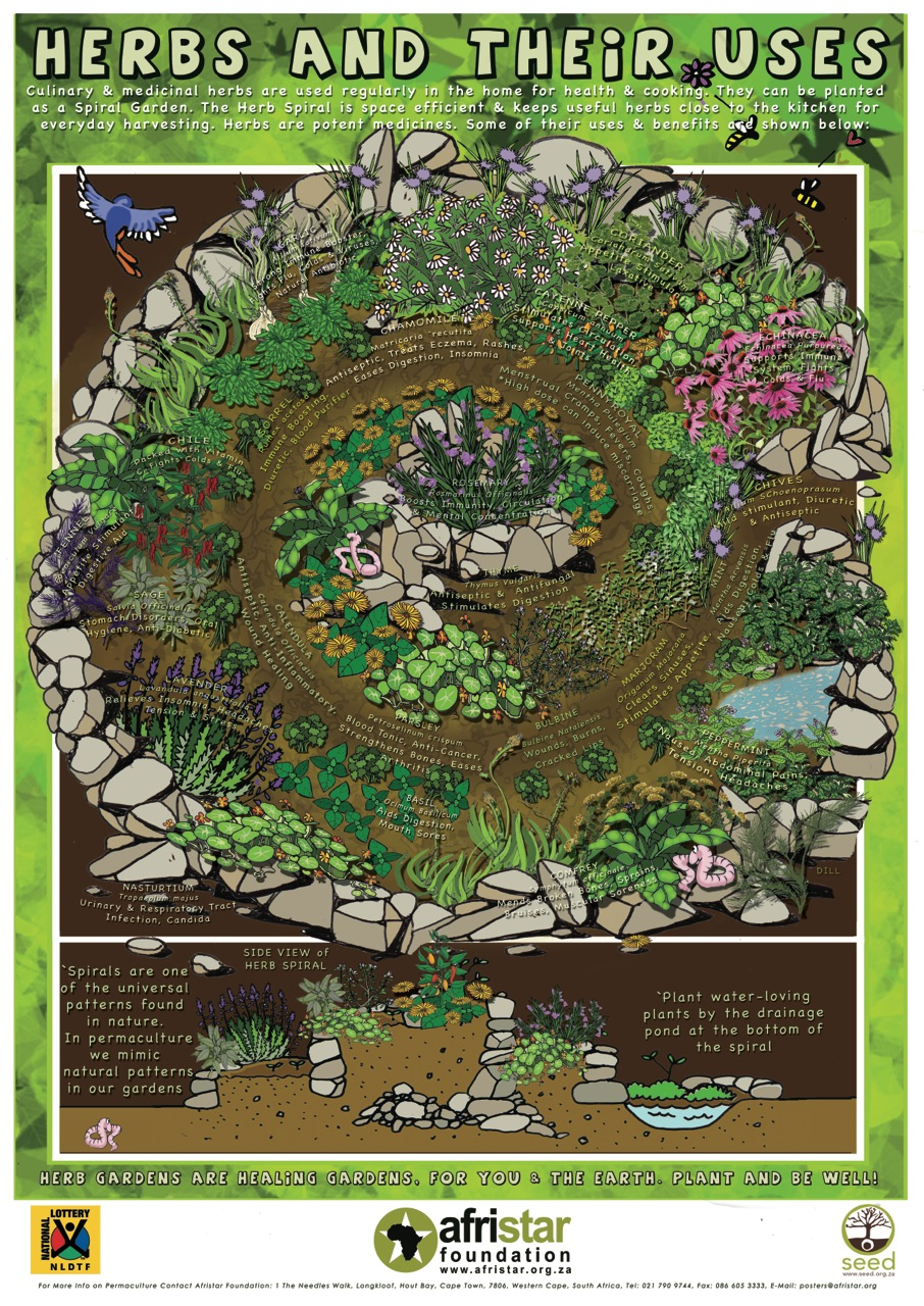 Companion Planting Chart Matt Sawyers 39 Blog