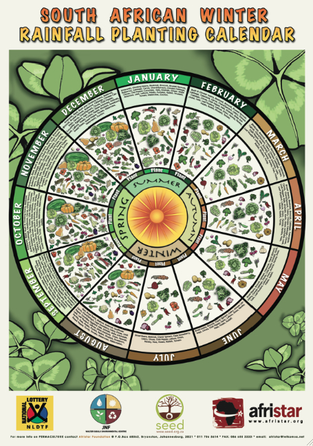 Companion Planting Chart | Matt Sawyers' Blog